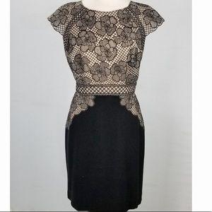 Antonio Melanie black & cream sheath dress 4